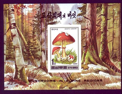 Korea PDR 1995 Mushrooms Imperf Mnh S/S