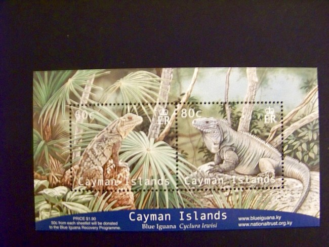 Cayman Islands #922 Iguana S/S Mnh Lizards