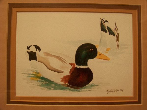 Hartwig 1984 Watercolor of Duck Framed
